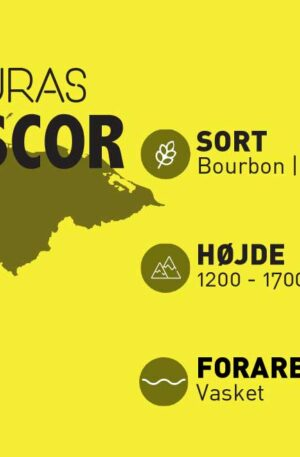 Honduras Cafescore - økollogisk kaffe