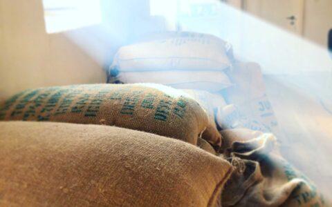 Økologisk specialkaffe til restauration og cafer, bæredygtigt pakke i CO2-nutrale kaffeposer